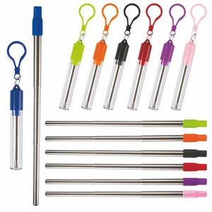 Collapsible Stainless Steel Straw Kit